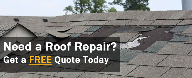 Alamo, TX Roofing Company